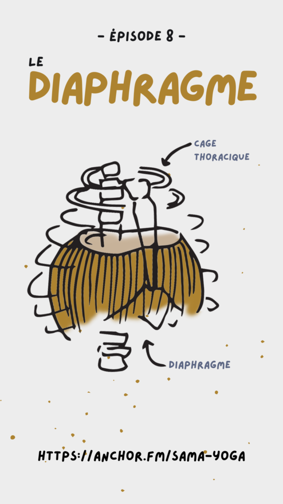 Image du diaphragme